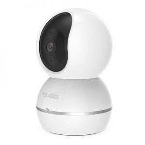 دوربین تحت شبکه بلورمز مدل Snowman